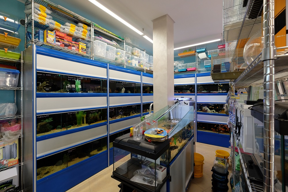 Vendita acquari Piossasco Torino