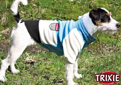 vendita collari guinzagli cappottini a Piossasco (TO)